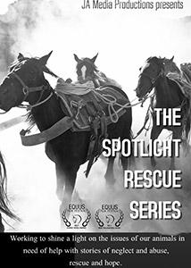 spotlight serie stream